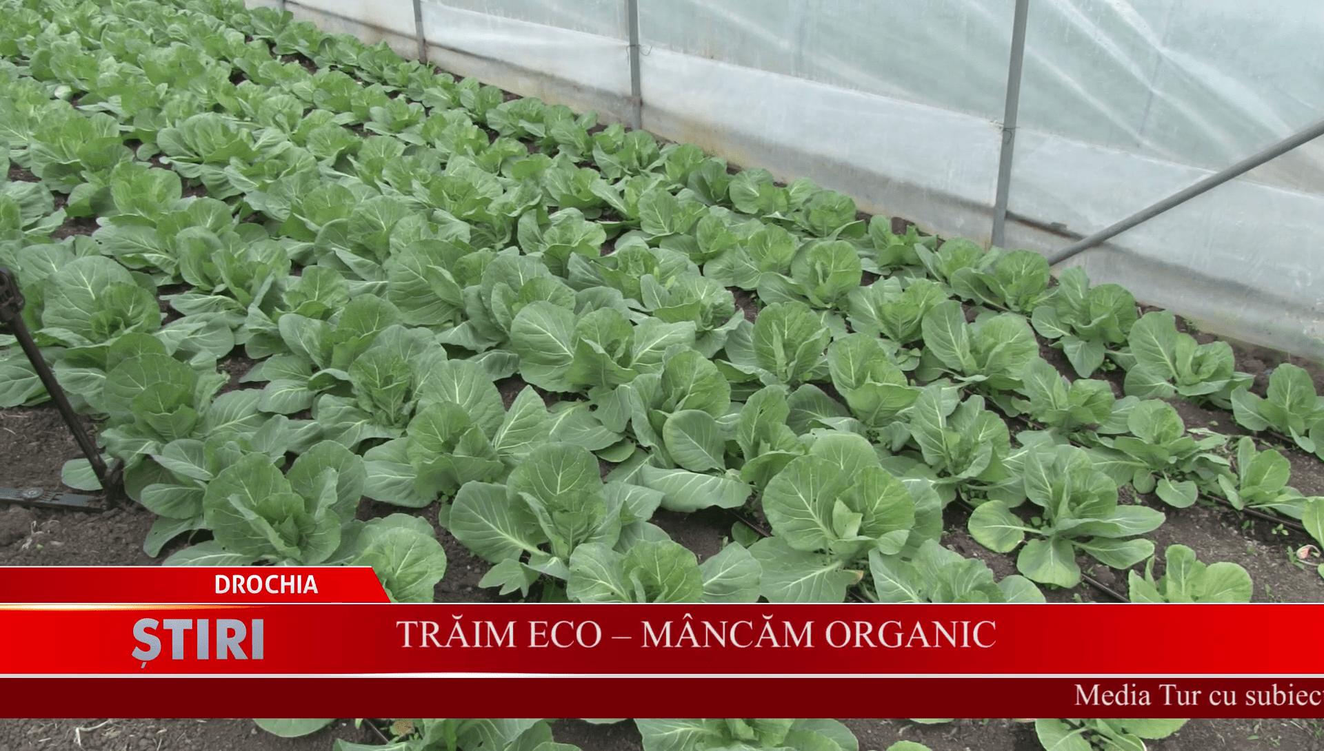 Trăim Eco - Mâncăm organic